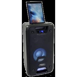 ENCEINTE FREESOUND 300W AVEC EFFET LEDS FREESOUND300 - rer electronic